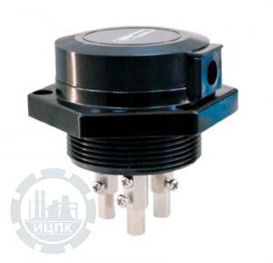 Трехэлектродный датчик уровня ДК-3  фото 1